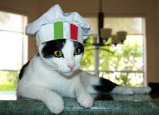 Italianchefcat